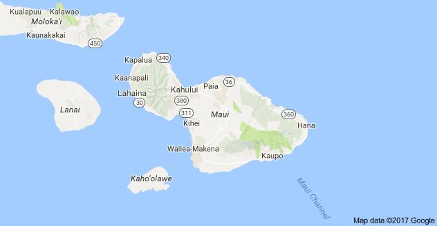Maui SEO