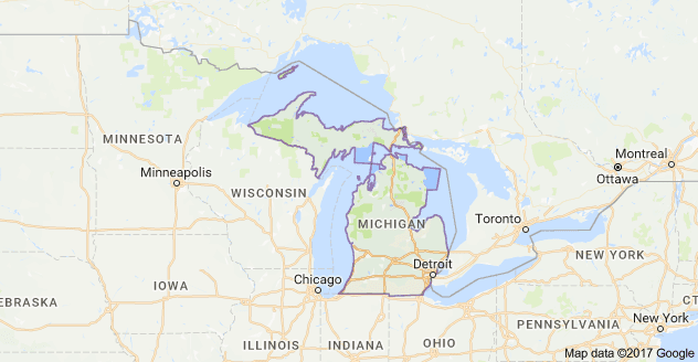 Michigan SEO