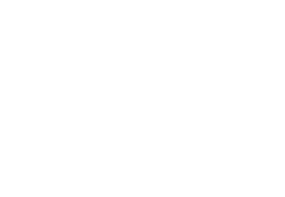Sapid Agency
